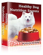 healthy dog nutrition secrets